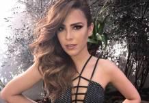 Wanessa Camargo (Reprodução/Instagram)