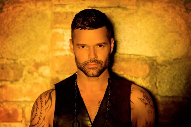 Ricky Martin/Divulgação