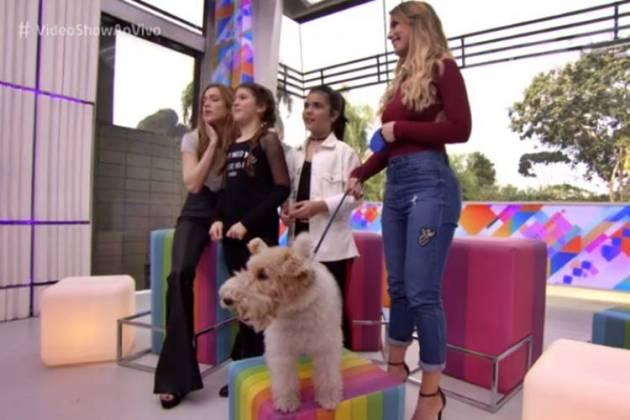 Video Show (Reprodução/TV Globo)