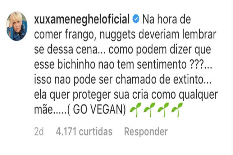 Xuxa discute com seguidora no Instagram/Instagram