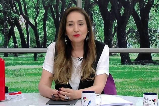 Sonia Abrão - Reprodução: Google