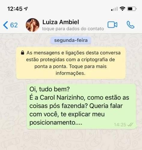 Após reality, Carol Narizinho relata que Luiza Ambiel a deixou no vácuo - Foto: Reprodução/Print WhatsApp Carol Narizinho